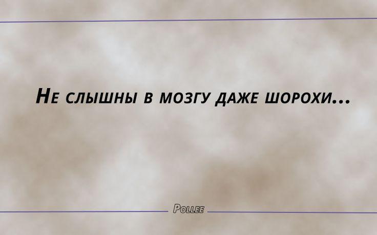 Без имени-4