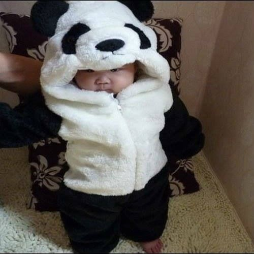 Korean baby. Literally the cutest thing ever. When I have a kid I am going to get them each a suit like this. hehe... they're gonna hate the pictures when they get older, TOO BAD! XD