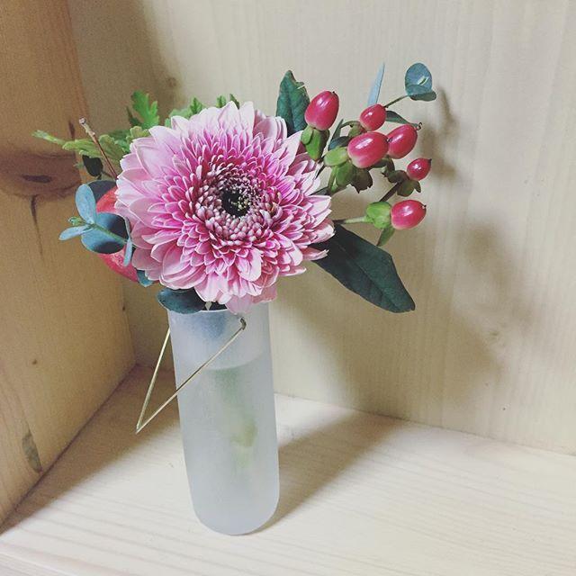 Instagram media by se2akane - 最近疲れ気味なので明るい色のお花を飾ってみた。植物は癒し。 #flower#花のある暮らし#津村里佳 2015.11.12Thu