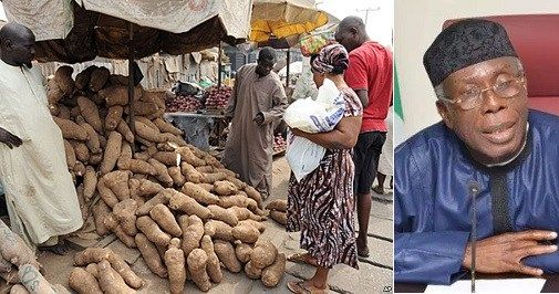 Stop Trying To Rubbish Government Policy If Ghana Can Export Yam We Too Can  Audu Ogbeh