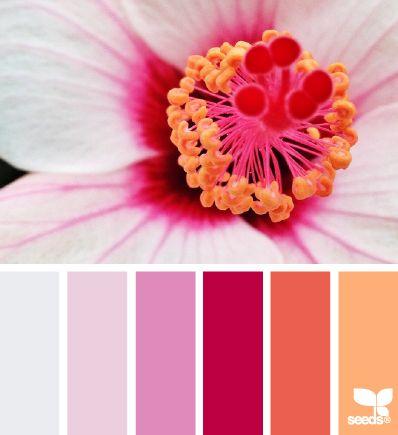 flora brights