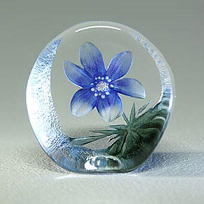 Floral+Fantasy+Sinivuokko,+Målerås+Glasbruk