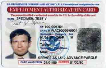 Uscis Uscis To Issue Employment Authorization And
