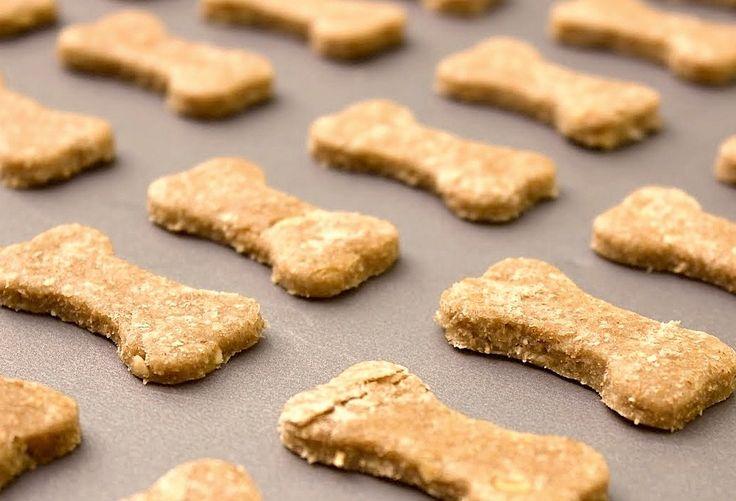 Biscotti per Cani fatti in casa, ricetta facilissima