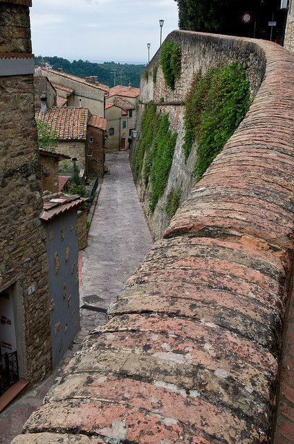 Montescudaio, Tuscany, Italy