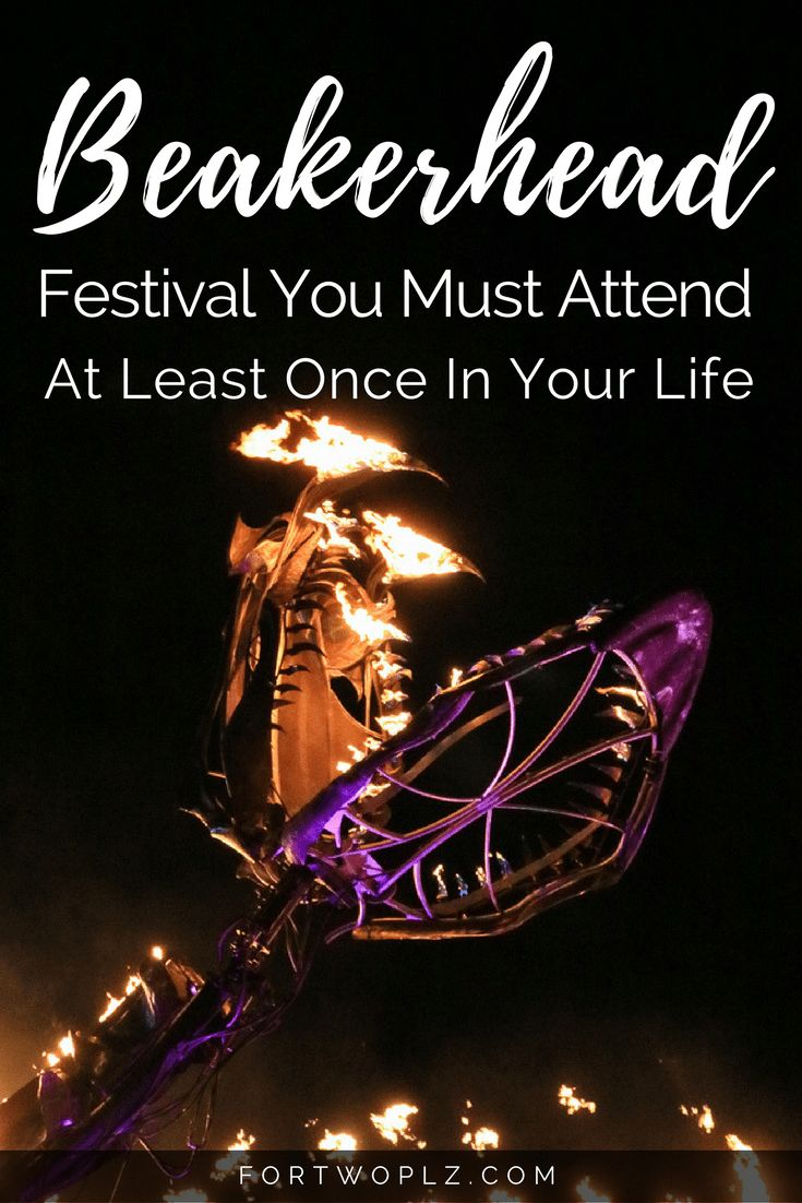 Beakerhead takes place in Calgary every September. Find out why it's the greatest science festival that you should attend at least once in your life.