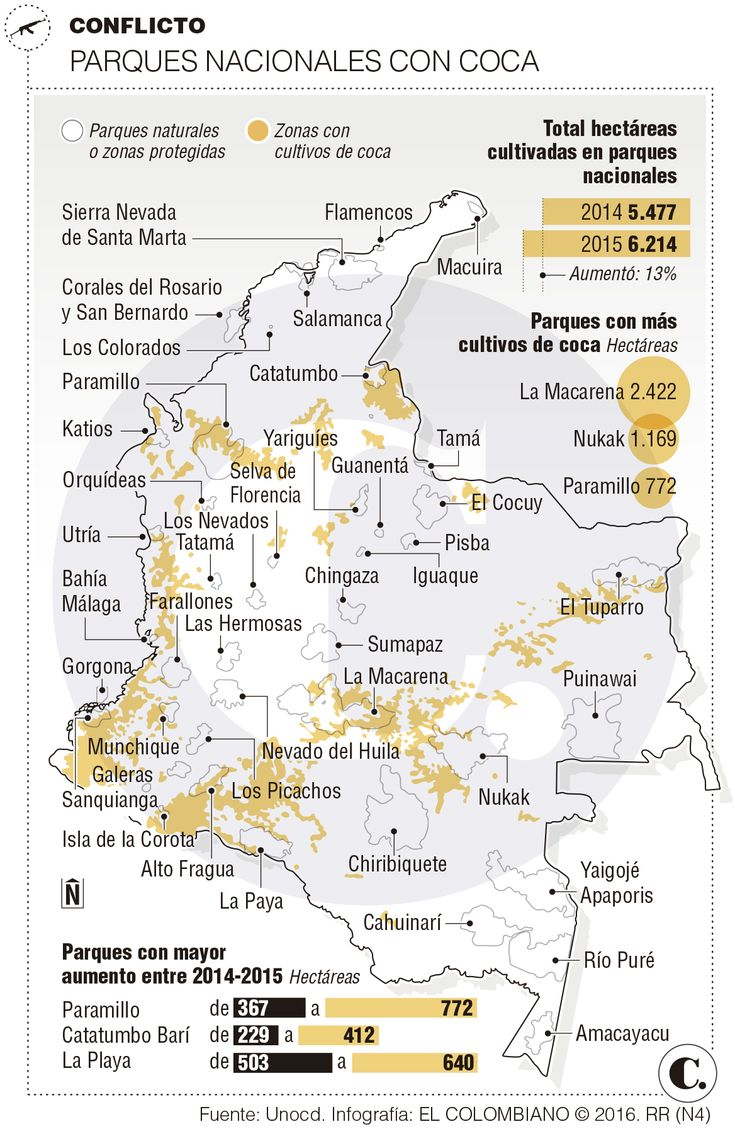 Aumenta amenaza de la coca en Parques Nacionales