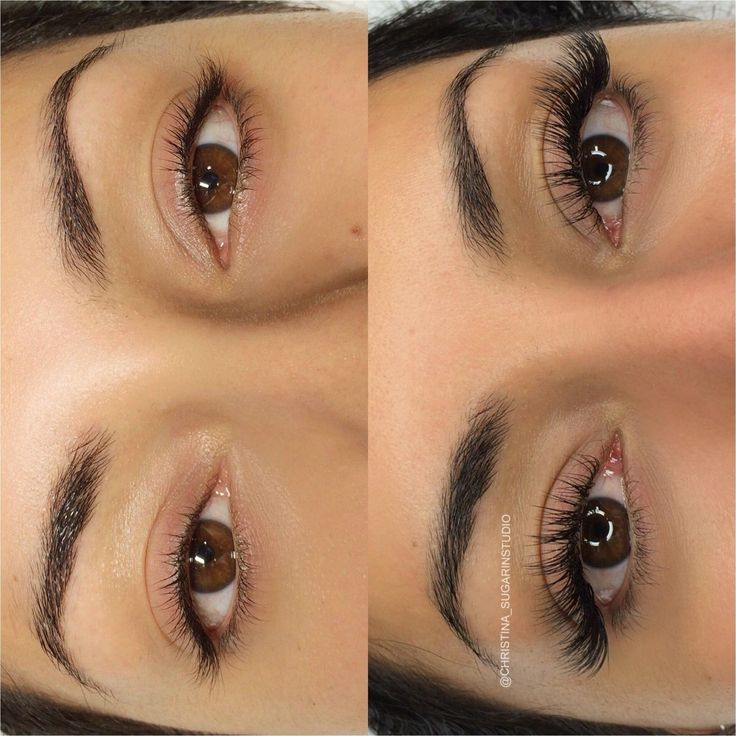Eyelash curler ardell eyelashes eyelash extension