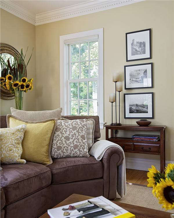 8 best pillows for a brown couch images on pinterest on best living room colors id=21106