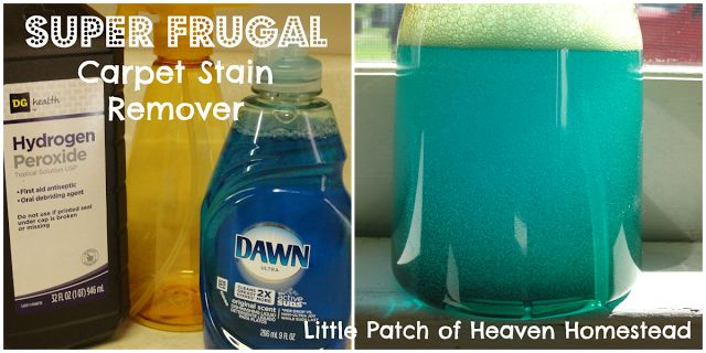 Little Patch of Heaven Homestead: Frugal Carpet Cleaning