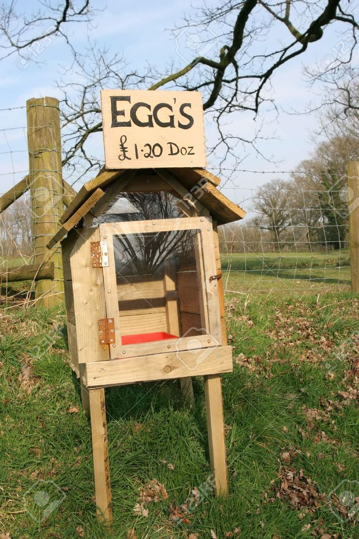 Turkey For Sale >> Rough wooden and perspex honesty egg box in rural countryside with eggs for sale sign. Honesty ...