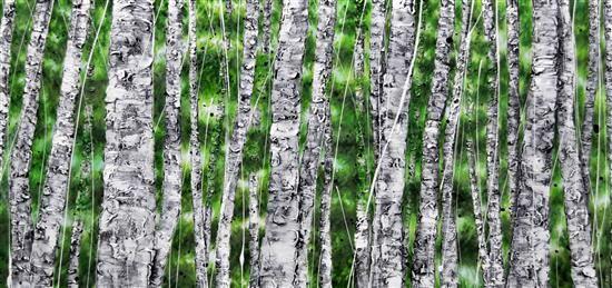 Orange Art Gallery - Julie Berthelot - Forest of Birches ; Purchase Online;