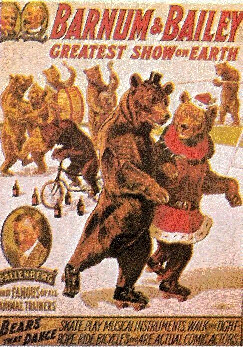 1916 – Barnum & Bailey; Dancing Bears