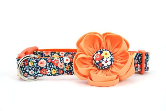 Peach Dog Flower Collar Orange Navy Floral Girl Dog by dusidog