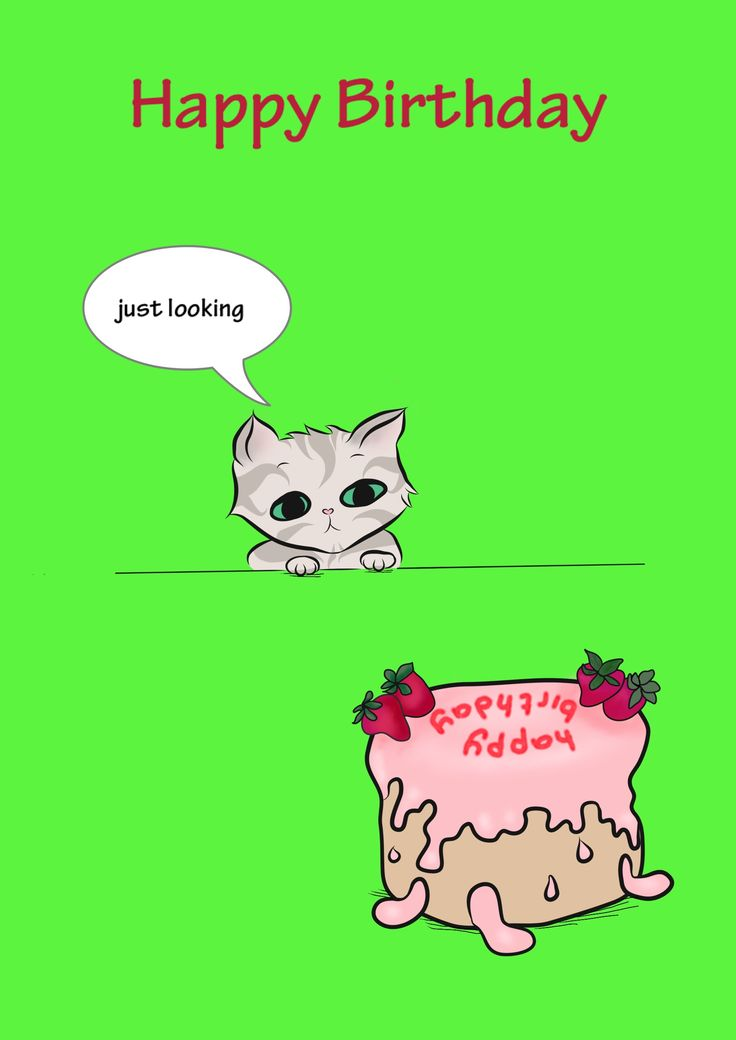 'Just Looking' illustrated card of Nutmeg the cat just thinking about licking the birthday cake