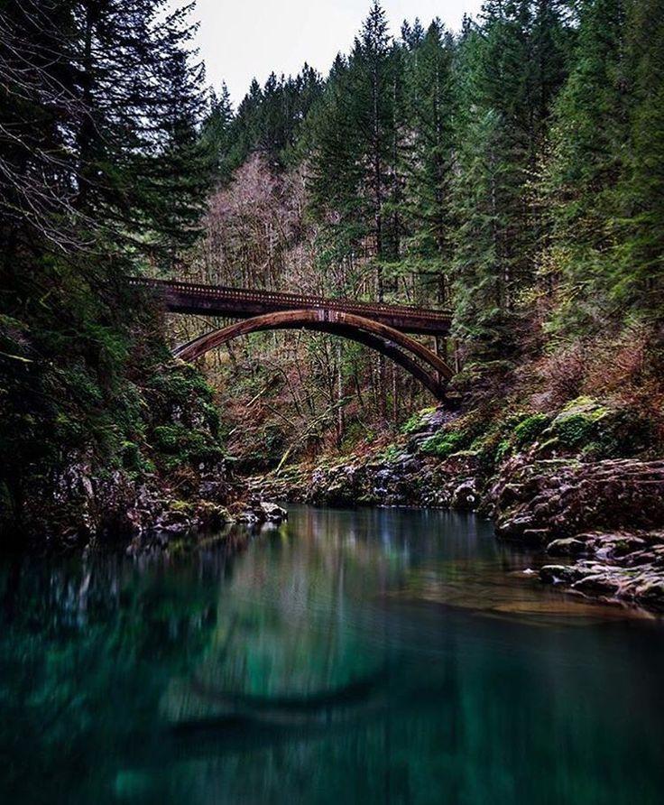 Washington State Native Plants: 1000+ Images About Beautiful Washington State On Pinterest