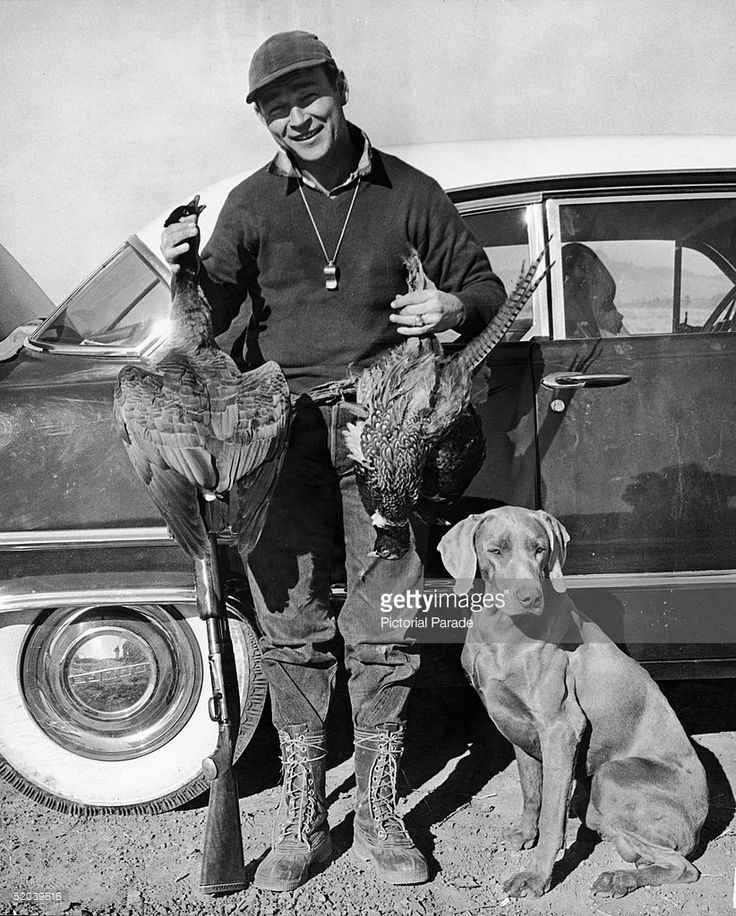 American actor and singer Roy Rogers (1911 - 1998) leans against his Dodge car as he poses with two dead pheasants, his gun, and his hunting dog, early 1950s. There is a whistle around his neck. Are you into stars like I am? When it concerns doggies and their well-known owners, I would like to know very first hand! Please visit my blog site http://Fifie.net and never ever miss out on a terrific story about well-known animals and celebrities.