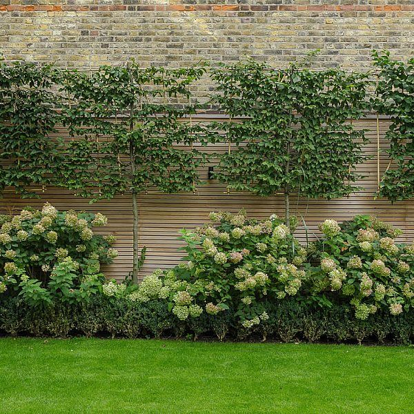 51 best Gardens design ideas images on Pinterest Backyard patio