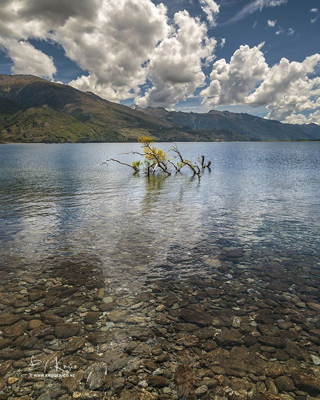 Lake Wanaka is located in the Otago region of New Zealand at an altitude of 300 meters. Covering an area of 192 km2 it is New Zealand's fourth largest lake and estimated to be more than 300 m deep.