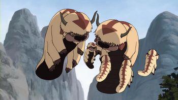 Bisonte volador | Avatar Wiki | Fandom powered by Wikia