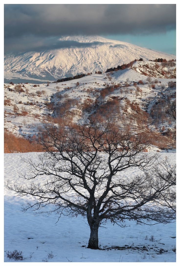 Parco dei Nebrodi con l'Etna sullo sfondo, 2016