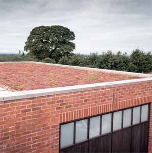 Roof Garden on Residential Property
