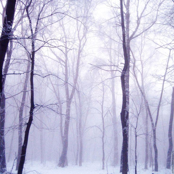 Купить Мистический лес - фотография, пейзаж зимний, зима, серый, природа, норвегия, фотокартина
