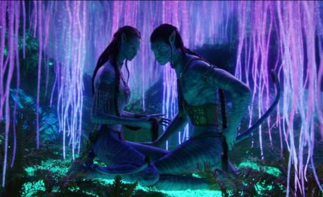 The glowing Tree of Souls from the blockbuster film Avatar had the ability to connect directly to the nervous system of all living things