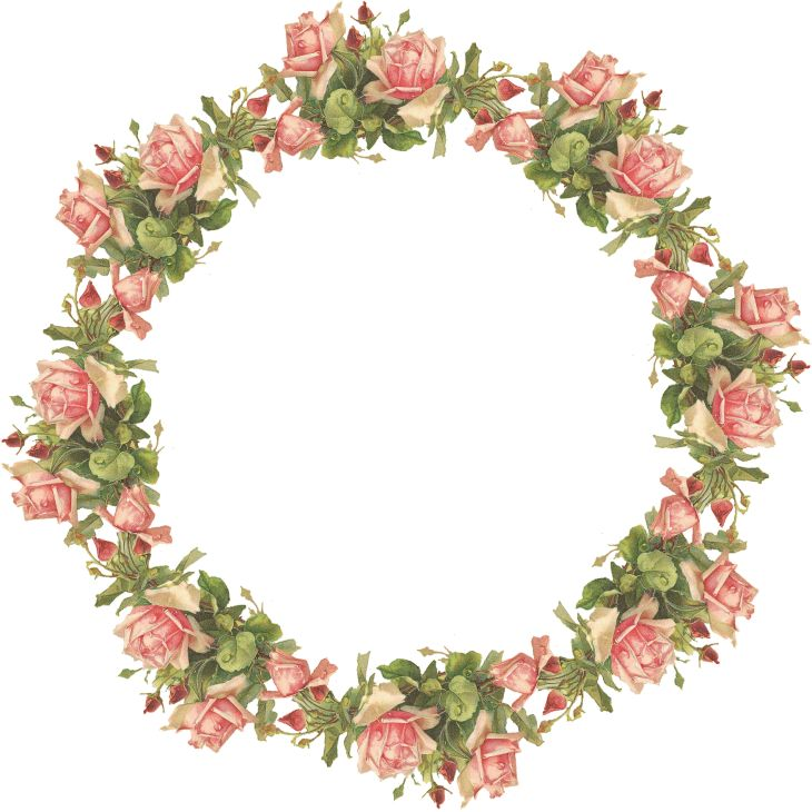 Wings of Whimsy: Pink Roses Wreath - Catherine Klein - PNG (transparent background) - free for personal use