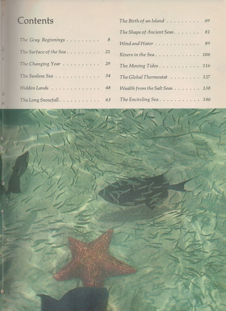 The Sea Around Us by Rachel Carson - Young Reader's Edition; Table of contents. See blog for resources to use with this book.