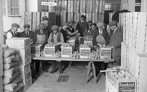 Fruit Market, October 1929 Wrapped oranges being packed into cartons at the London Fruit Exchange, Spitalfields. During World War I, food imports were inevitably reduced and home produce then attracted government subsidies throughout the 1920s and 1930s in an effort to balance the trade deficit. Oranges remained popular, however, and were traditionally stuffed into the toes of children's stockings at Christmas.