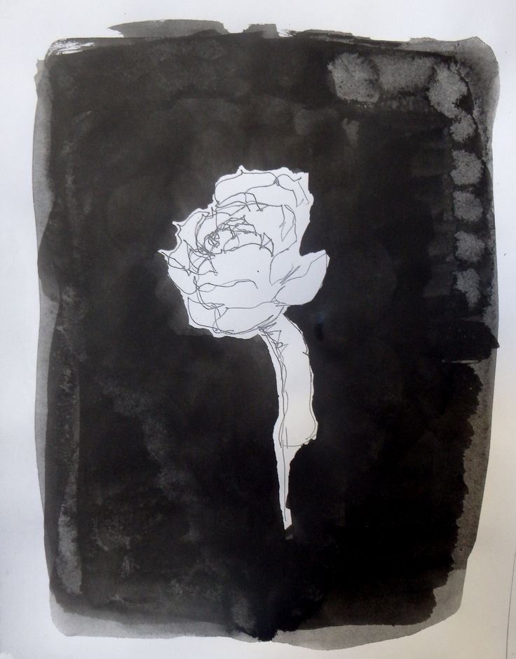 Not a Rose - Lily Santamaria - 2016