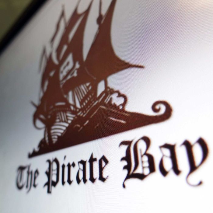 Internet companies forced to block The Pirate Bay bittorrent websites in Australia Federal Court rules