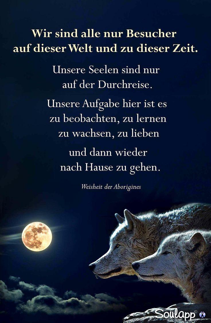 Find This Pin And More On Schönes U0026 Lustiges By Sgierschner.