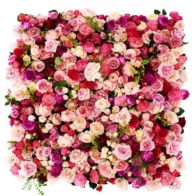 I'm swooning over the flower wall backdrops that have been appearing all over my Pinterest feed. Who wouldn't want this jaw-dropping backdrop to enhance the beauty of their wedding photos? It's a great statement piece that works great as a … Continue reading → Read more...