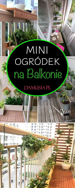 Mini Ogrodek Czyli Uprawa Ziol Warzyw I Owocow Na Balkonie Pergola Outdoor Structures Outdoor