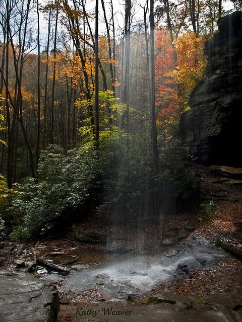 Moore Cove Falls    Waterfall in the Pisgah National Forest in North Carolina.