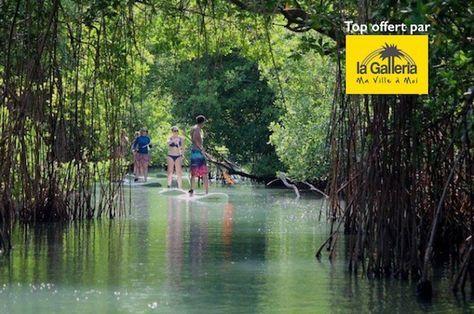 Le Top 10 des activités nautiques à réaliser en Martinique   RePinned by : www.powercouplelife.com