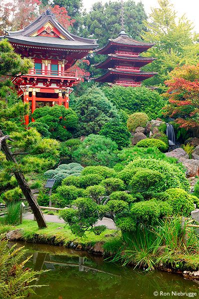 San francisco japanese tea garden in golden gate park - Japanese tea garden san francisco ...