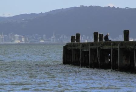 Day's Bay wharf