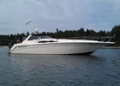 Sea Ray Sundancer 50 50  www.gig-harbor-yacht-detailing.com