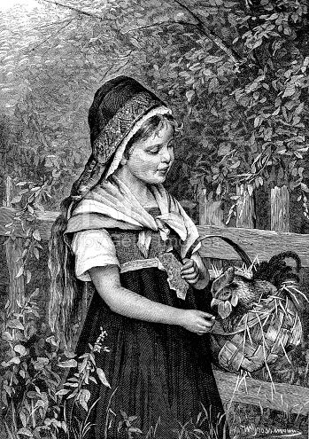 Victorian Engraving Of Young Girl Carrying A Chicken In A Wicker Basket 19th Century Childhood And Animals 1883 Stock Vector Art & More Images of 19th Century 924419160 | iStock