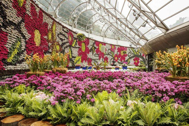 Buy from more than 18,000 plants at the Royal Botanic Gardens All about Flowers Plant Sale.