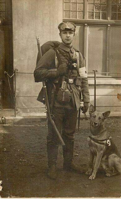10 Images About German Shepherd On Pinterest Military