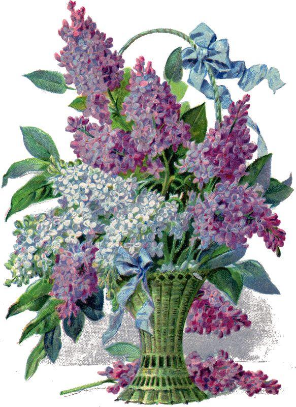 Glanzbilder - Victorian Die Cut - Victorian Scrap - Tube Victorienne - Glansbilleder - Plaatjes : Blumenkörbe II - flower basket II - paniers de fleurs