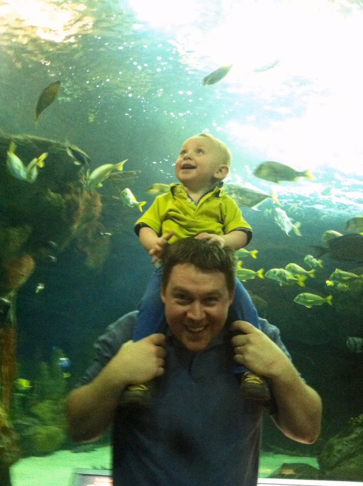 Blake's first time @ Sea of Life # MOA