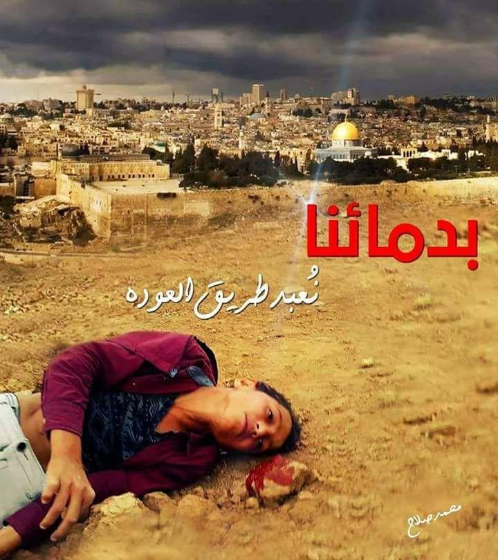 Pin By Sami On مسيرة العوده الكبرى يوم الارض 30 مارس 2018 Movies Movie Posters Poster