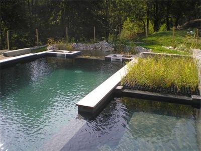 183 Besten Natural Pools Bilder Auf Pinterest Naturschwimmb Der Landschaftsbau Und