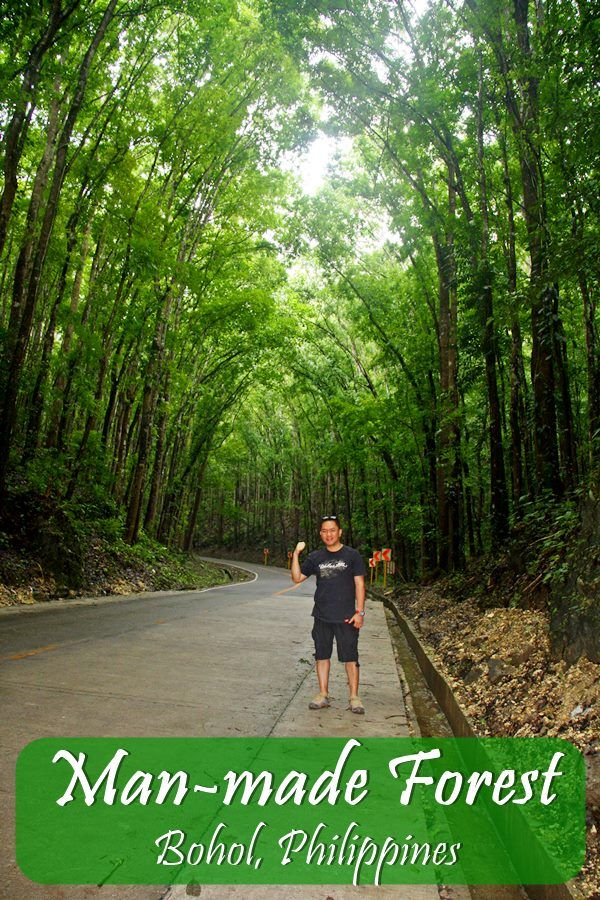 bohol destination analysis This page contains a detailed analysis of the backlinks of boholislandtourcom find out which pages link to the website and find the most important  destination url.