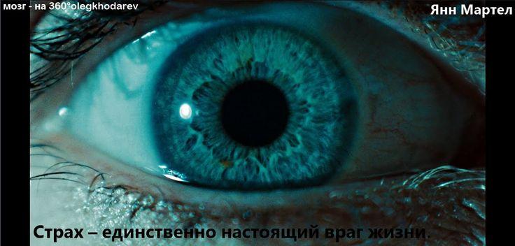 Не БОЙСЯ, малыш ! Х1 Олег Ходарев